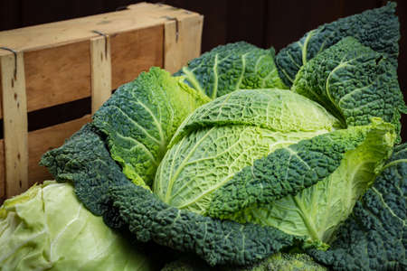 Green fresh vegetables - whole Savoy cabbage, broccoli, other cabbages  up on wooden background
