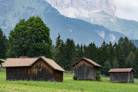 trentino: Typical Dolomites landscape in summer time, Trentino, Italy