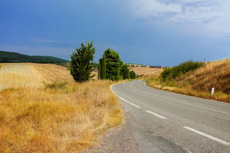 pienza: Typical landscape in Tuscany, farmhouse and cypress on the hills of Val dOrcia - Italy