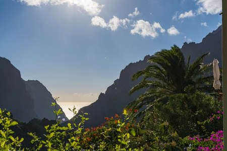 subtropical: Nature in Masca Village, Tenerife - palm trees and mountains