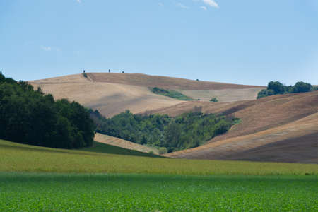 montepulciano: Typical hills of Tuscany, as seen from Montepulciano