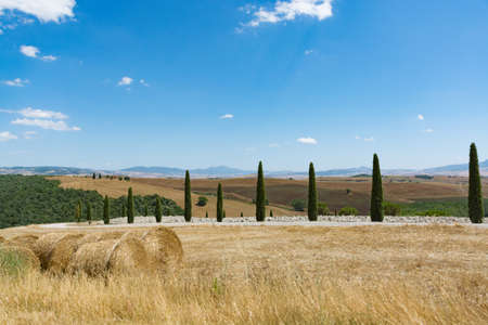 Typical hills of Tuscany, as seen from Montepulciano