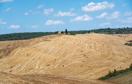 wine road: Typical hills of Tuscany, as seen from Montepulciano