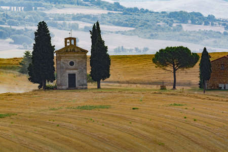 Typical landscape in Tuscany, farmhouse and cypress on the hills of Val d'Orcia - Italy