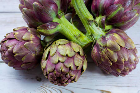 Fresh big Romanesco artichokes green-purple flower heads ready to cook seasonal food Banco de Imagens