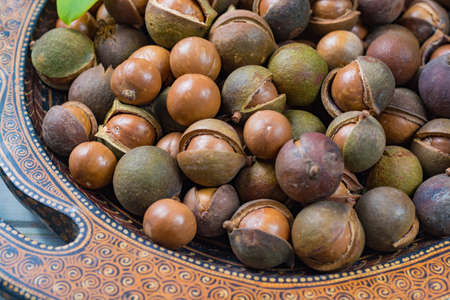 Macadamia nuts harvest close up with leaves Stock Photo