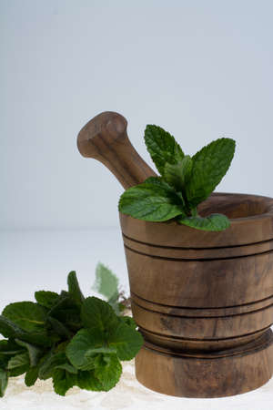 thee: Fresh green mint in olive wood mortar Stock Photo