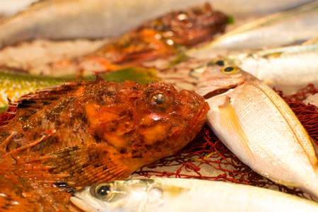 ?atch of fresh raw fish from Aegean sea, Sicily, Italy, ready to cook, on ice Stock Photo