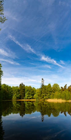 edges: Reflection of trees in the forest lake in summer Stock Photo