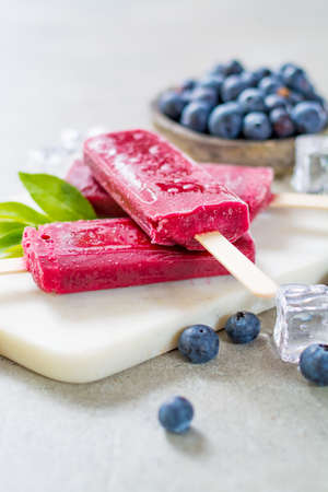 Fresh summer wild blueberries and home made sorbet ice cream popsicle.
