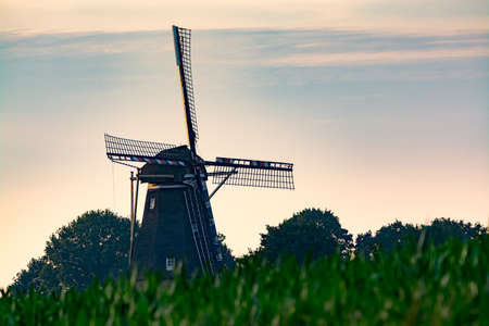 Dutch windmill, small village in North Brabant, mill and corn fields on sunset in summer