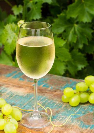 Wijn glas met ijskoude witte wijn, terras, wijnproeverij in zonnige dag, groene wijngaard tuin achtergrond en witte druif Stockfoto