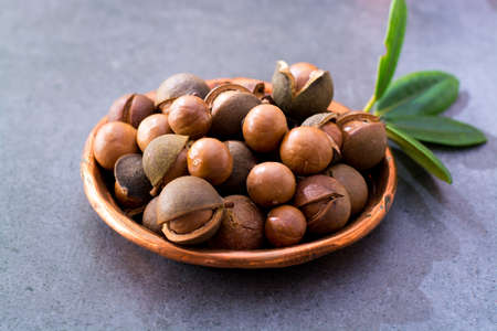 Australian macadamia nuts, unpeeld fresh harvest close up