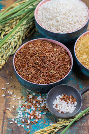 Groene rijst oren van Camargue Provence, Frankrijk rijstvelden en vroomheid van gedroogde rijst op houten tafel