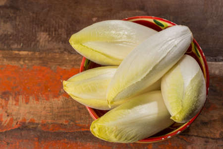 Fresh organic chicory  endive salad ready to eat, traditional food in Belgium and the Netherlands
