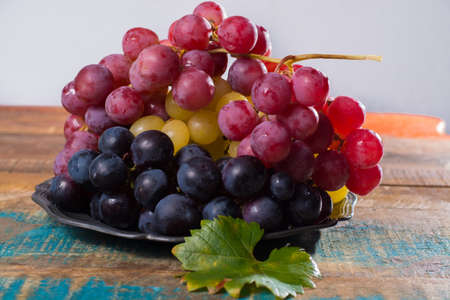 Large organic table grape Globe in assortment served on the tin plate close up