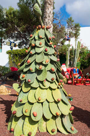 decorative christmas tree from big opuntia cacti chtistmas vacation season in teguise lanzarote