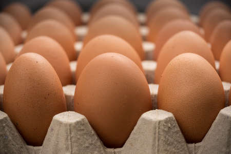 Brown cage-free chicken eggs in carton, close up Stock Photo