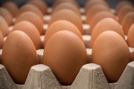 Brown cage-free chicken eggs in carton, close up Foto de archivo