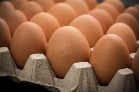 Brown cage-free chicken eggs in carton, close up 스톡 콘텐츠