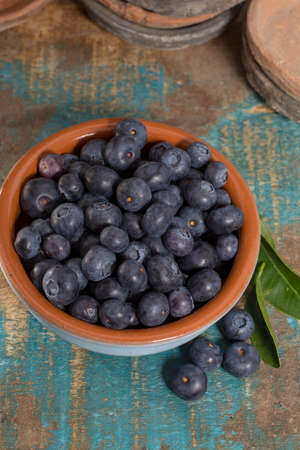 Organic healthy blueberry in bowl