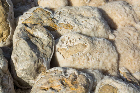 Stones with salt, lowest salty lake in world below sea level Dead sea, full of minerals near luxury vacation resort Ein Bokek, perfect place for medical treatments, climatotherapy, thalassotherapy and heliotherapy.