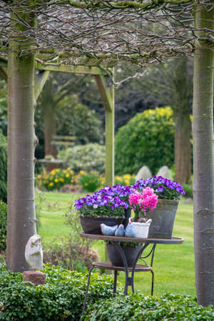Rural country style spring garden with colorful flowers, cutted trees and green lawn Stock Photo