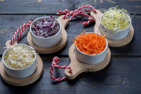 Raw fresh young organic sprouts of leek, alfalfa, red reddish in bowls, carrot and green lettuce