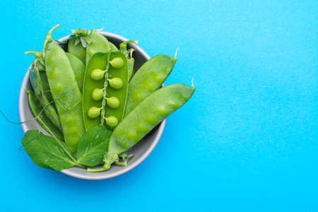 Fresh green ripe green peas in bowl copy space close up isolated on trendy blue background Stock Photo