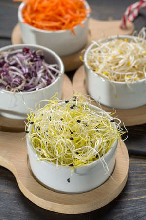 Raw fresh young organic sprouts of leek, alfalfa, red reddish and carrot in bowls, green lettuce salad, vitamins food