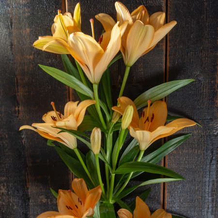 Sensual bouquet of beautiful orange lilies flowers close up