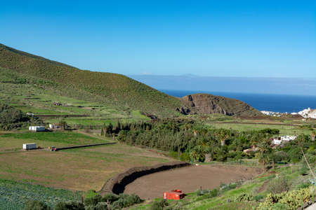 Fertile valley with mango and oranges fruit plantations, vineyards and avocados orchards near Agaete village, Gran Canaria, Canary islands, Spain Stock fotó
