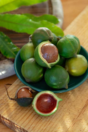New harvest of ripe fresh Australian macadamia nuts in shell with leaves close up Фото со стока
