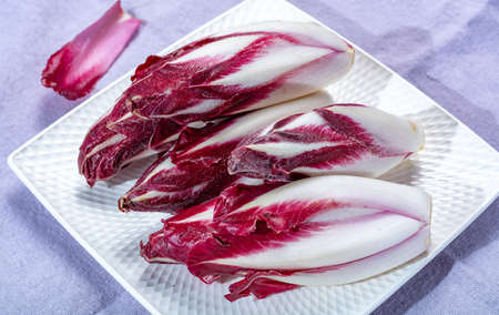 Groupe de chicorée Radicchio rouge fraîche ou de légumes d'endive belge, également connu sous le nom de salade witlof, gros plan