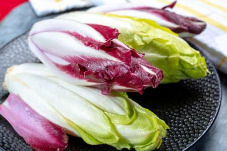 Groupe d'endives belges vertes fraîches ou de chicorée et de légumes Radicchio rouges, également connus sous le nom de salade witlof close up Banque d'images
