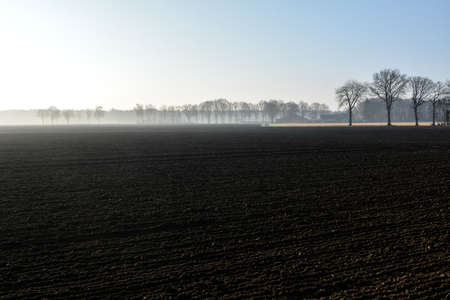 Morning spring landscape with newly plowed field, farmland in  Netherlands in Europe