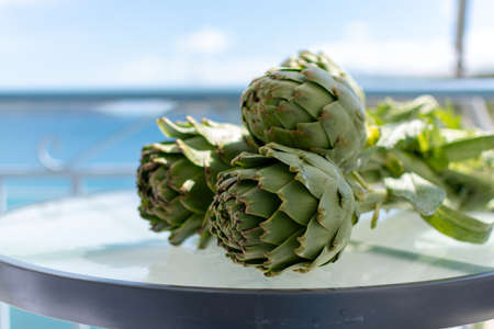 Bunch of fresh raw artichokes heads from artichoke plantation, new harvest in Argolida, Greece, ready to cook Imagens