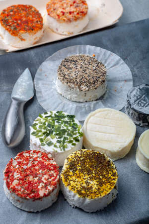 Colorful assortment of French fresh white soft goat cheeses with different tastes topping made with herbs, paprika, indian curry, bruscetta, chives and dried tomatoes, close up 版權商用圖片