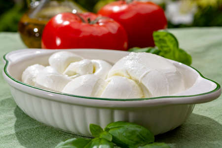 Twisted to form a plait treccia mozzarella Italian soft cheese served with fresh basil and tomatoes close up