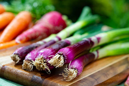 Bunches of fresh purple green onions, red long radish and carrots, new harvest of healthy vegetables close up