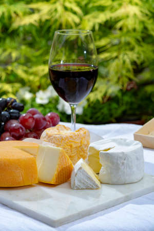 French cheeses collection, yellow Riche de Saveurs, Vieux Pane and Le peche des bons peres cheeses served with glass of red port wine on marble plate outdoor in green garden close up Foto de archivo