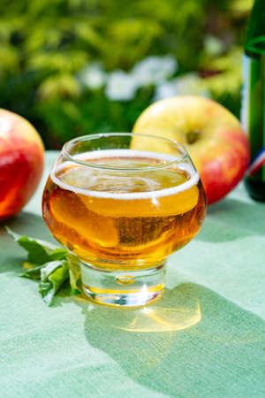 Glass with fresh cold French apple cider drink from Normandy region served with apples in green garden Imagens - 124903793