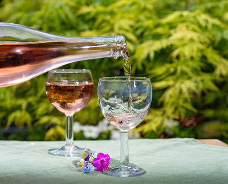 Waiter pouring cold rose wine in glasses in summer sunny day in blossoming garden close up Stock Photo