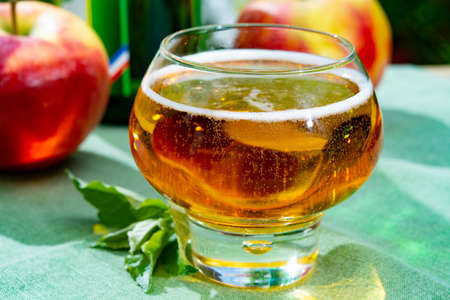 Glass with fresh cold French apple cider drink from Normandy region served with apples in green garden Imagens - 124904089