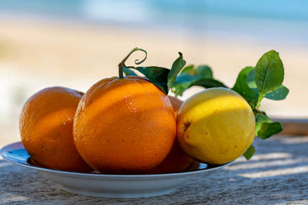 Fresh ripe citrus fruits, oranges and lemons with leaves served on terrace with sea view in sunny day