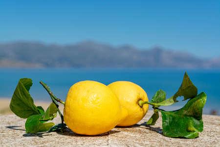 Agrumi freschi maturi, limoni italiani con foglie serviti sulla terrazza con vista mare in giornata di sole Archivio Fotografico