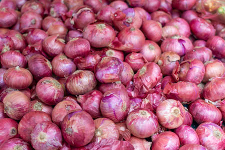 Young fresh red onion on market, new harvest, close up, food background