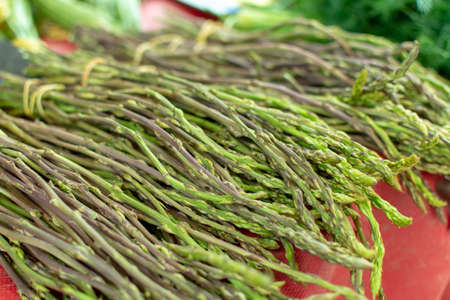 Natural healthy food from forest and mountains in Greece green wild asparagus on farmer market