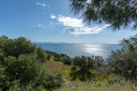 Landscape with small greek islands bays and trees on Peloponnese, Greece near Arkadiko town, summer vacation destination