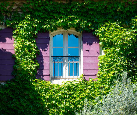 Old cosy Provencal house with garden full of colorful flowers in sunny day, France Imagens